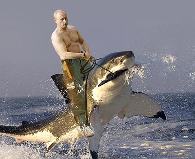 Putin e o Tubarão
