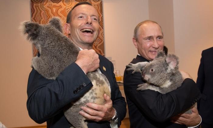 Para quem já abraçou tigres e ursos polares, o líder russo Vladimir Putin está bem à vontade. Crédito