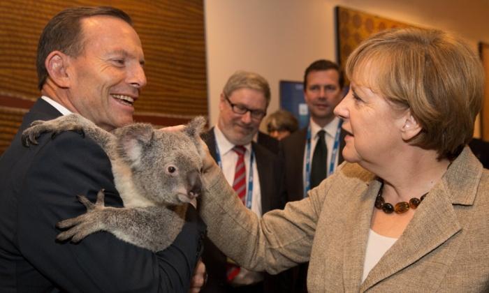 A chanceler alemã Angela Merkel não tão amigada com o coala. Crédito Crédito Andrew Taylor/G20 Australia
