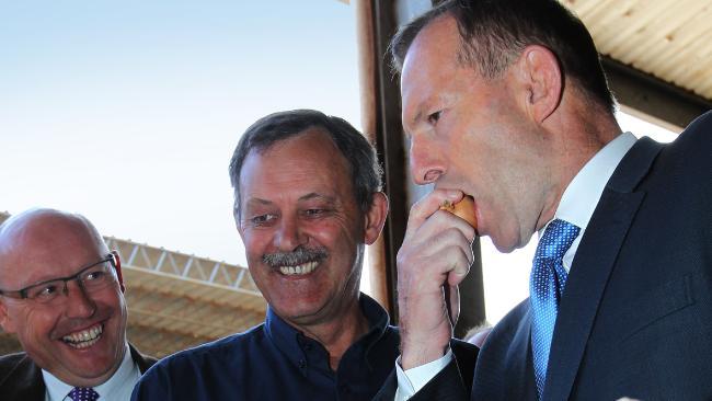 Tony Abbott, premiê australiano, morde uma cebola crua com casca.